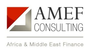amef consulting